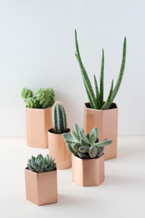 DIY Copper plant holders
